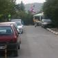 Събор в Боснек, 2010 - сергиите